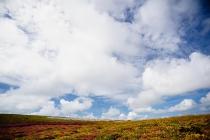 natur_landschaft16